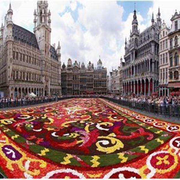 Immagine di Fiandre. Una regione da scoprire